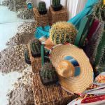 Raumausstattung Mau, Thema Mexiko